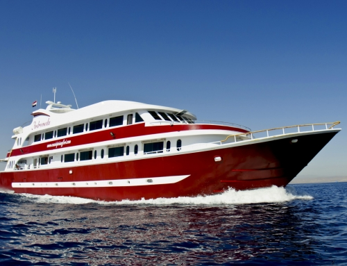 Nardymo safaris 2017 11 19-26 po Raudonąją jūrą