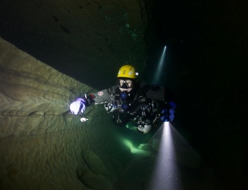Cave kursai Prancuzija – LOT 2017